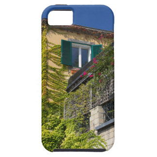 Colorful leaves on house iPhone 5 covers