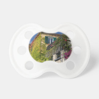 Colorful leaves on house pacifier