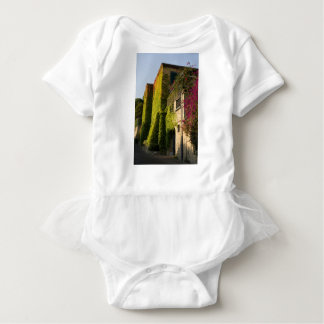Colorful leaves on house walls baby bodysuit