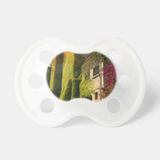 Colorful leaves on house walls baby pacifiers