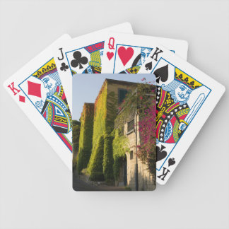 Colorful leaves on house walls bicycle playing cards