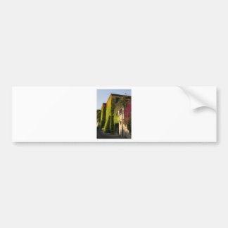 Colorful leaves on house walls bumper sticker