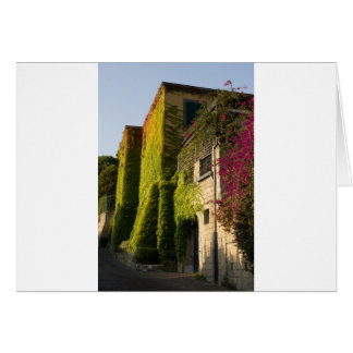Colorful leaves on house walls card