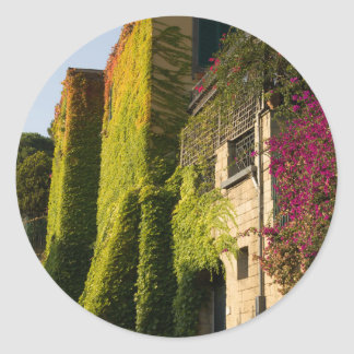 Colorful leaves on house walls classic round sticker