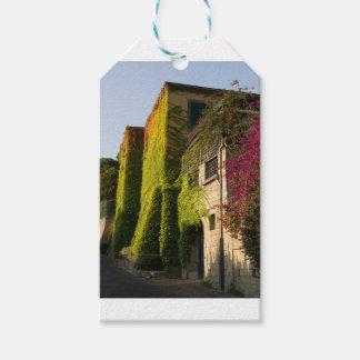 Colorful leaves on house walls gift tags