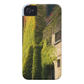 Colorful leaves on house walls iPhone 4 cases