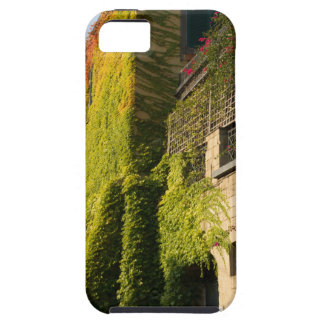 Colorful leaves on house walls iPhone 5 cover