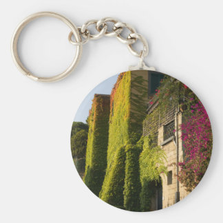 Colorful leaves on house walls keychain