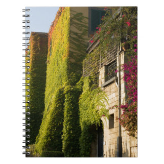 Colorful leaves on house walls notebook