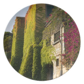 Colorful leaves on house walls plate