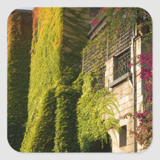 Colorful leaves on house walls square sticker