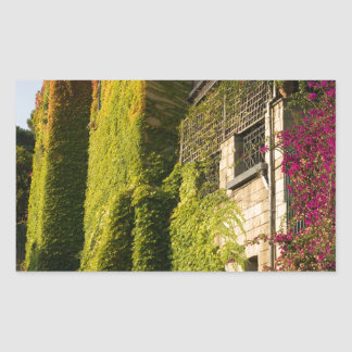 Colorful leaves on house walls sticker