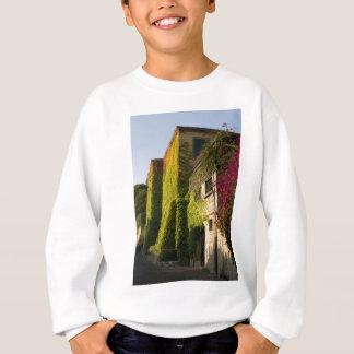 Colorful leaves on house walls sweatshirt