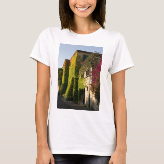 Colorful leaves on house walls T-Shirt