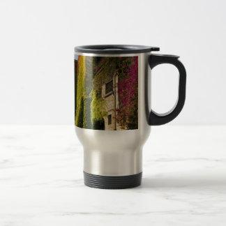 Colorful leaves on house walls travel mug
