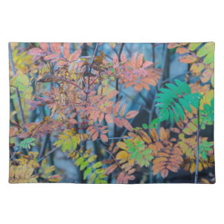 colorful leaves placemats