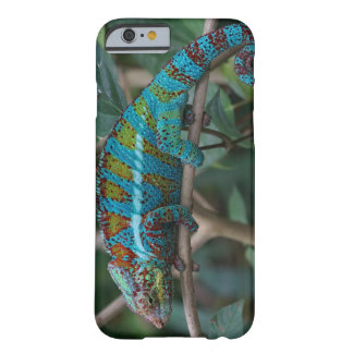 Colorful Lizard Barely There iPhone 6 Case