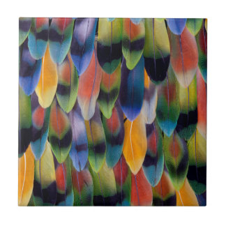 Colorful lovebird parrot feathers tile