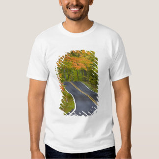 Colorful maple trees in autumn line scenic t shirt