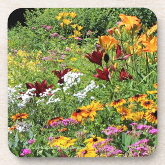 Colorful Mid Summer Gardens! Coaster