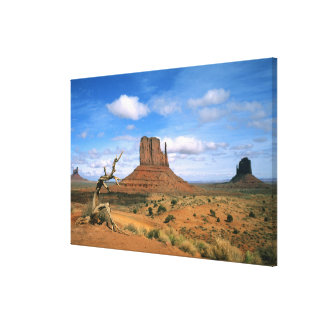 Colorful Monument Valley Mittens in Utah USA Canvas Prints