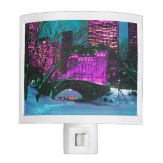 Colorful New-York City Central Park View Night Lite