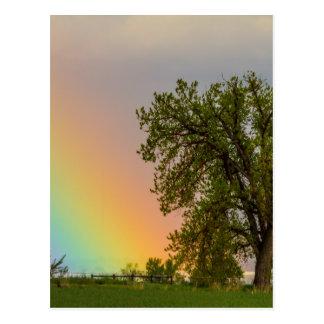 Colorful Optic Rainbow Postcard