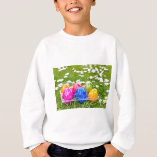 Colorful painted easter eggs in grass with daisies sweatshirt