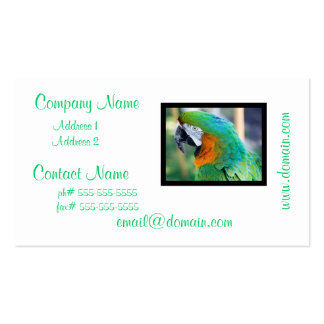 Colorful Parrot Business Cards