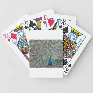 Colorful Peacock Bicycle Playing Cards