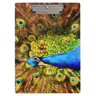 Colorful Peacock Clipboard