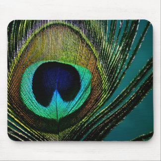Colorful Peacock Feather Photograph Mousepad