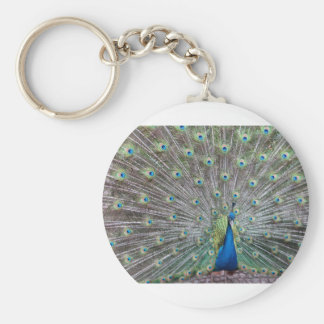 Colorful Peacock Keychain
