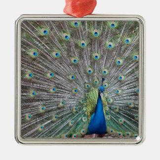 Colorful Peacock Metal Ornament