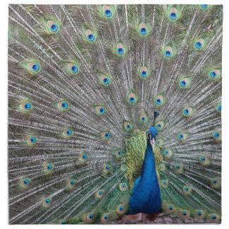 Colorful Peacock Napkin