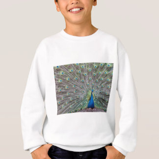 Colorful Peacock Sweatshirt