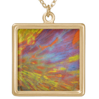 Colorful Petrified Wood close-up Gold Plated Necklace