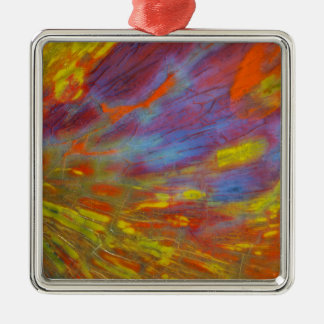 Colorful Petrified Wood close-up Silver-Colored Square Ornament