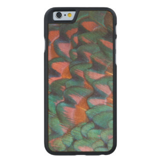 Colorful Pheasant Feathers Abstract Carved Maple iPhone 6 Case