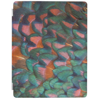 Colorful Pheasant Feathers Abstract iPad Cover