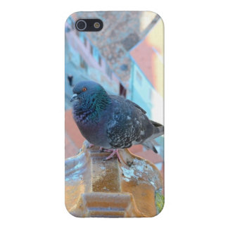 Colorful Pigeon iPhone 5 case