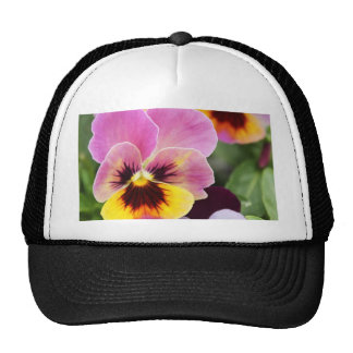 Colorful Pink and Yellow Pansy Flower Trucker Hat