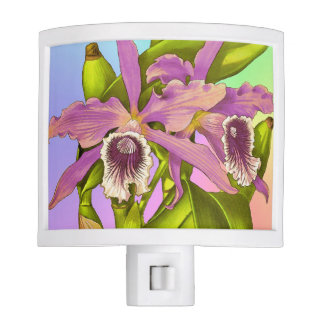 Colorful Pink Orchids Night Light