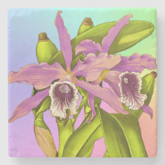 Colorful Pink Orchids Stone Coaster