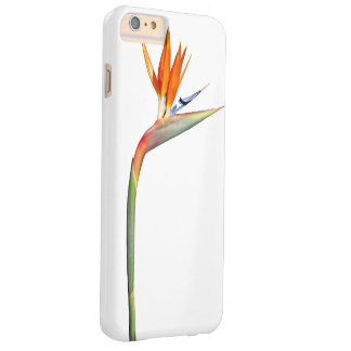 Colorful plants barely there iPhone 6 plus case