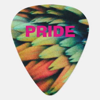 Colorful PRIDE Rainbow of Bird Feathers Guitar Pick