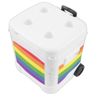Colorful Rainbow Flag Stripes Cooler