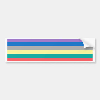 Colorful rainbow lines pattern bumper sticker