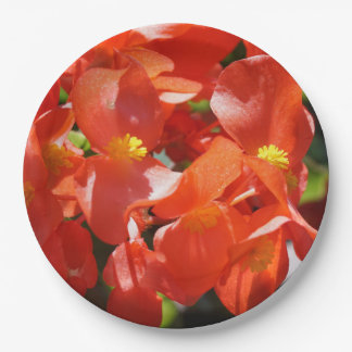 Colorful Red Begonia Flower Blossom Paper Plate