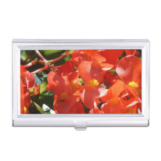 Colorful Red Begonia Flower Photo Business Card Holder